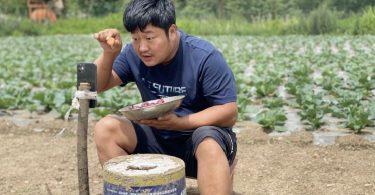 agricultores transmiten en vivo TikTok